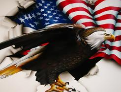 Super DETAIL of an AIRBRUSHED Eagle & the American Flag tearing through the torn steel.